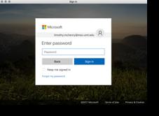 Cyberbear Password Entry Screen